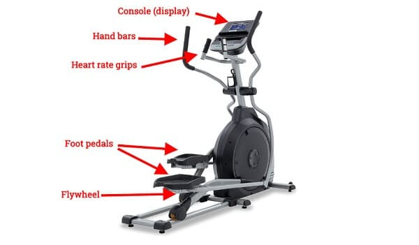 Anatomy of an Elliptical