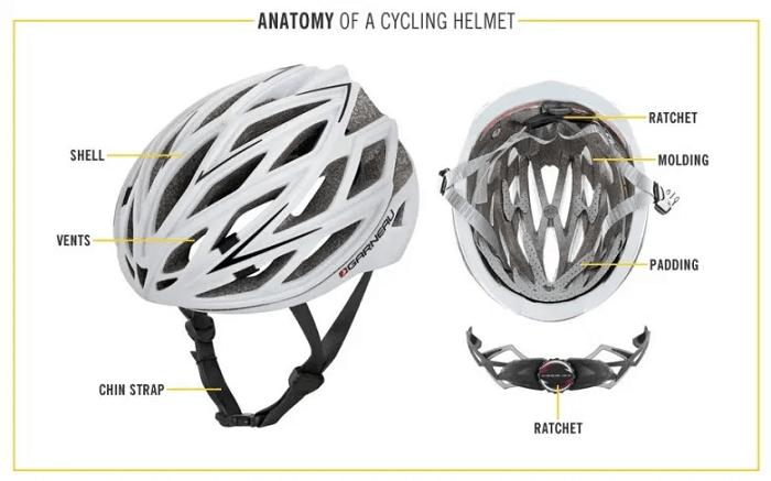 Helmet Anatomy