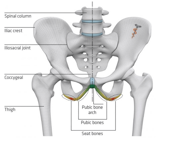 Seat and pubic area Mtb saddle