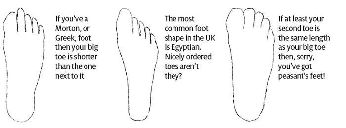 Types of feet